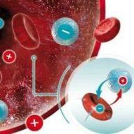 кровь резус-фактор
