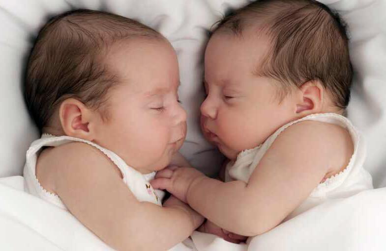 фото о близнецах и двойняшках