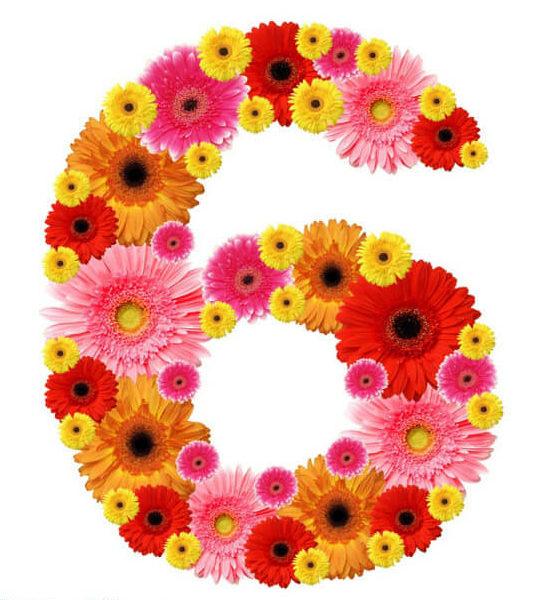 шесть картинка нумерология