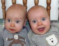 близнецы мордашки