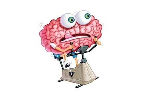 мозг отдыхает?