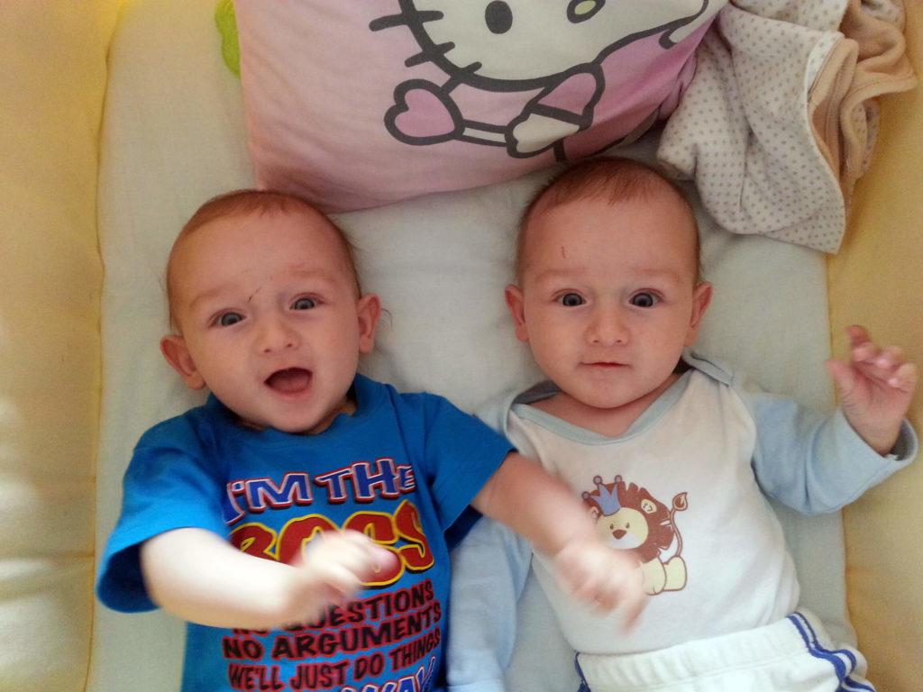 мои двойняшки