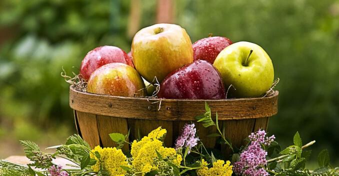 фрукты в сезон