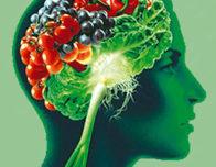 овощи и ягоды для мозга