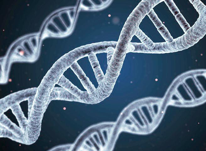 наука генетика фото