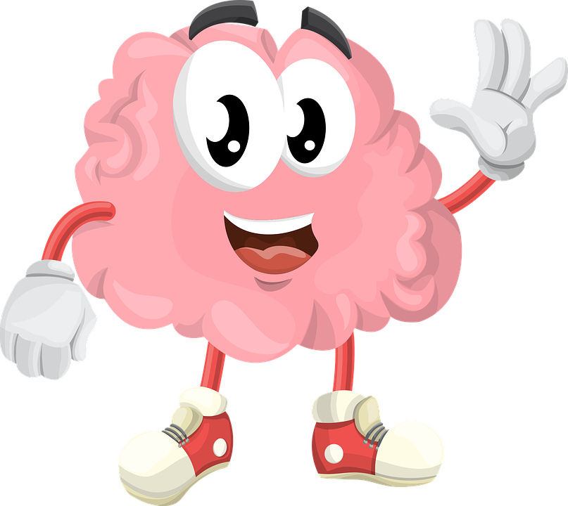 мозг картинка