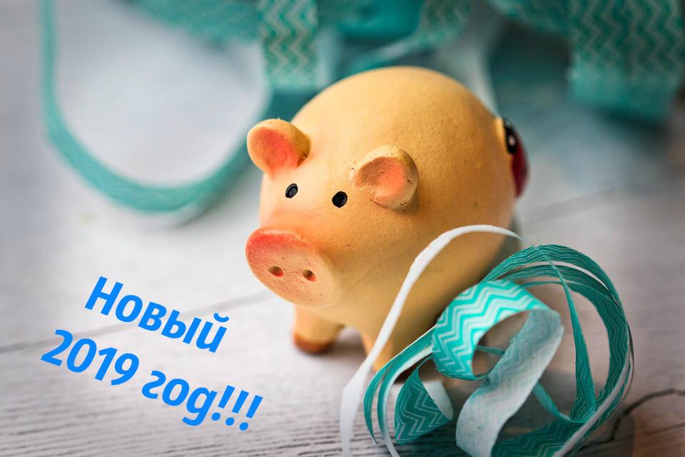 Новый год Свиньи фото
