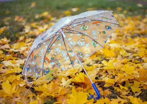 листопад осень фото