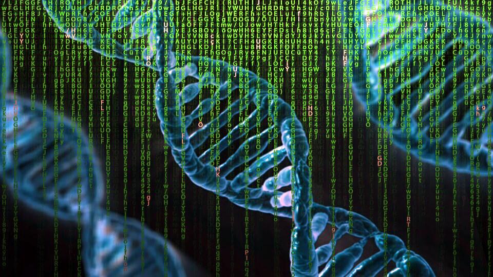 опыты с генетикой