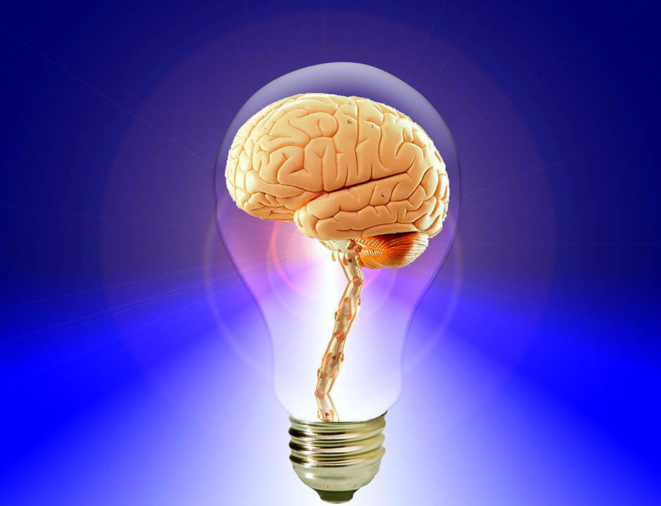 картинка мозг и лампочка