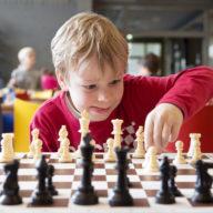 фото юный шахматист