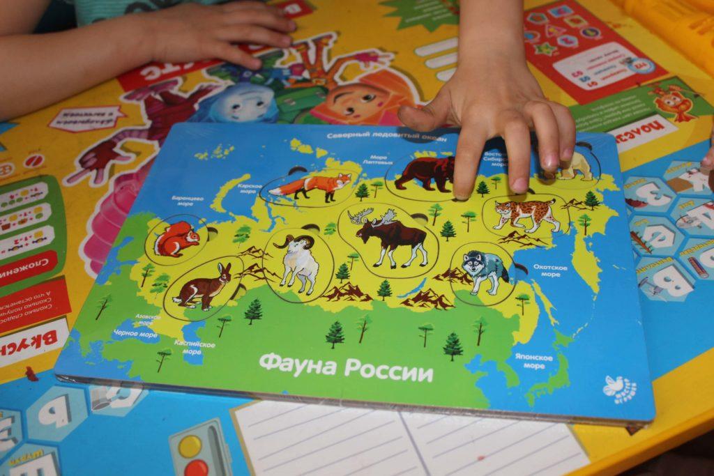 фауна России игра