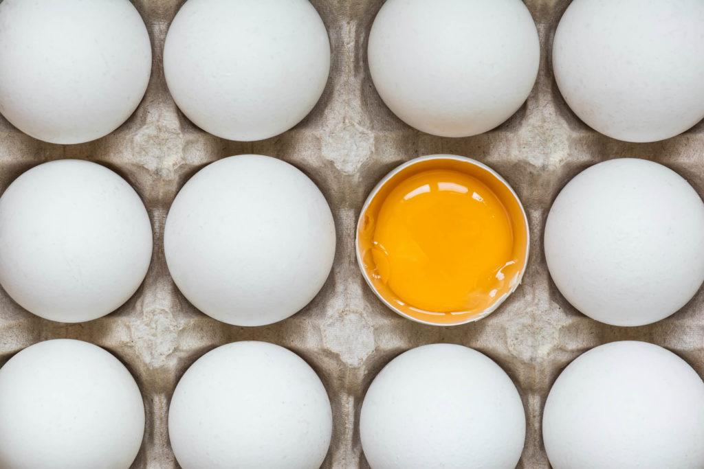 яйцеклетка в ожидании сперматозоида