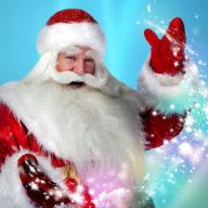 елки от Деда Мороза
