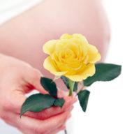 женский организм в период беременности