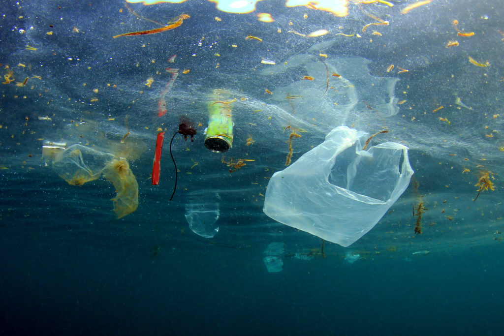 чистим океан