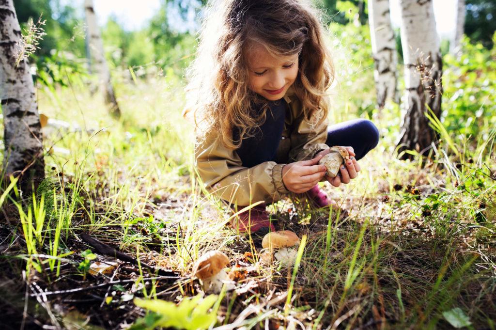 дети и лес
