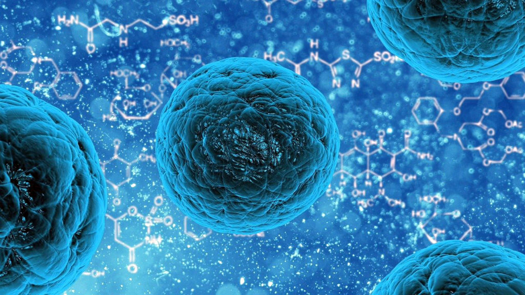 иммунне клетки против бактерий