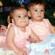 в мире близнецов